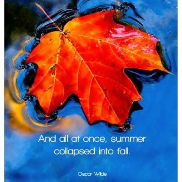 Autumn is my favorite season! #oscarwilde #justjudy24 #justjudyart ...